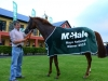 Rohans Pride, Winner of McHale Mayo National 2015 (2)