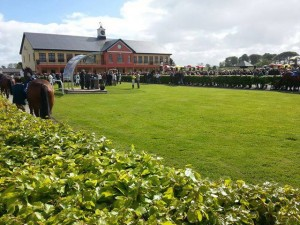 Parade Ring with state of the art presentation stand