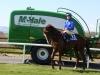 McHale Raceday 2 (1)