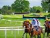 McHale Raceday (4)